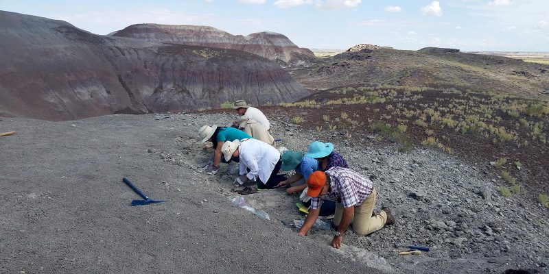 Paleontologist for a Day Class on their way to discovering new fossil at PEFO