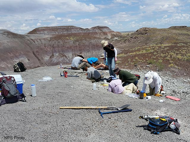 PFFI - Bill Parker dig | NPS Photo