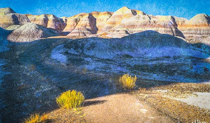 Blue Mesa Loop | Photo by David Behar