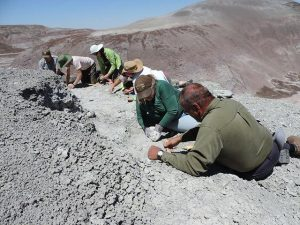 Group on Fossil Dig | NPS Photo